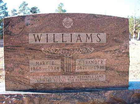 WILLIAMS, MARY E - Dallas County, Arkansas | MARY E WILLIAMS - Arkansas Gravestone Photos