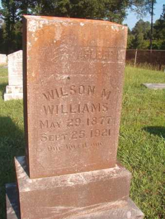 WILLIAMS, WILSON M - Dallas County, Arkansas | WILSON M WILLIAMS - Arkansas Gravestone Photos