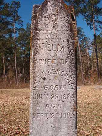 WOZENCRAFT, AMELIA G - Dallas County, Arkansas | AMELIA G WOZENCRAFT - Arkansas Gravestone Photos