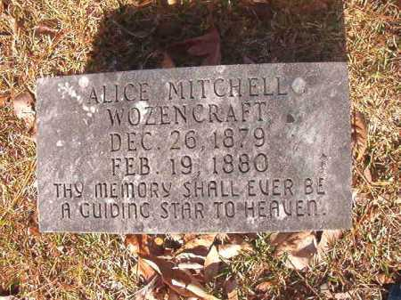 WOZENCRAFT, ALICE MITCHELL - Dallas County, Arkansas | ALICE MITCHELL WOZENCRAFT - Arkansas Gravestone Photos