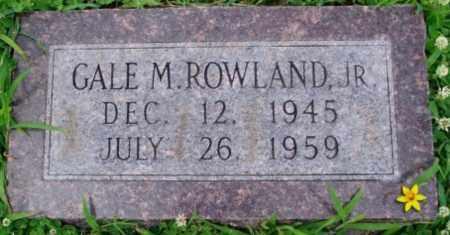 ROWLAND JR., GALE M. - Desha County, Arkansas | GALE M. ROWLAND JR. - Arkansas Gravestone Photos