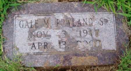 ROWLAND SR., GALE M. - Desha County, Arkansas | GALE M. ROWLAND SR. - Arkansas Gravestone Photos