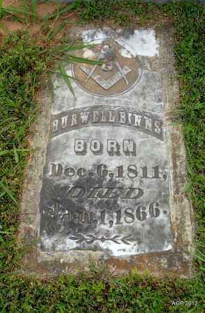 BINNS, BURWELL - Drew County, Arkansas | BURWELL BINNS - Arkansas Gravestone Photos
