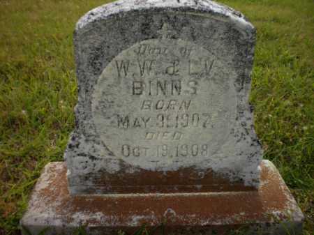 BINNS, DAUGHTER - Drew County, Arkansas | DAUGHTER BINNS - Arkansas Gravestone Photos