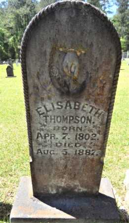 THOMPSON, ELIZABETH - Drew County, Arkansas | ELIZABETH THOMPSON - Arkansas Gravestone Photos