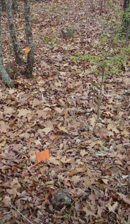 3 UNKNOWN MARKERS,  - Faulkner County, Arkansas    3 UNKNOWN MARKERS - Arkansas Gravestone Photos