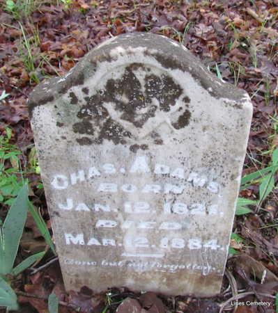 ADAMS, CHARLES - Faulkner County, Arkansas | CHARLES ADAMS - Arkansas Gravestone Photos