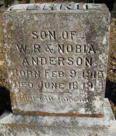 ANDERSON, JOHNIE - Faulkner County, Arkansas | JOHNIE ANDERSON - Arkansas Gravestone Photos