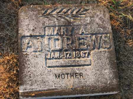 HOLT ANDREWS, MARY A. - Faulkner County, Arkansas | MARY A. HOLT ANDREWS - Arkansas Gravestone Photos
