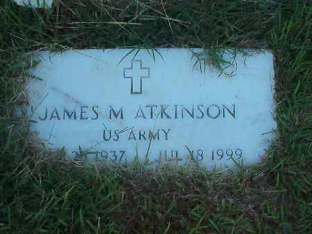 ATKINSON (VETERAN), JAMES M - Faulkner County, Arkansas | JAMES M ATKINSON (VETERAN) - Arkansas Gravestone Photos