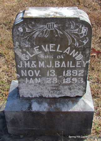 BAILEY, CLEVELAND - Faulkner County, Arkansas | CLEVELAND BAILEY - Arkansas Gravestone Photos