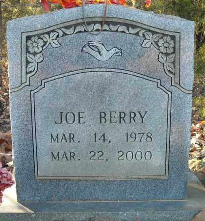BERRY, JOE - Faulkner County, Arkansas | JOE BERRY - Arkansas Gravestone Photos