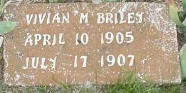 BRILEY, VIVIAN - Faulkner County, Arkansas | VIVIAN BRILEY - Arkansas Gravestone Photos