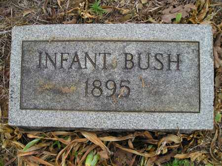 BUSH, INFANT - Faulkner County, Arkansas | INFANT BUSH - Arkansas Gravestone Photos