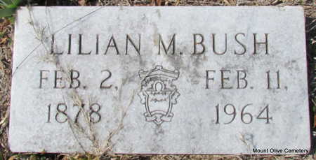 BUSH, LILIAN M. - Faulkner County, Arkansas | LILIAN M. BUSH - Arkansas Gravestone Photos