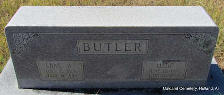 BUTLER, CHAS H. - Faulkner County, Arkansas | CHAS H. BUTLER - Arkansas Gravestone Photos