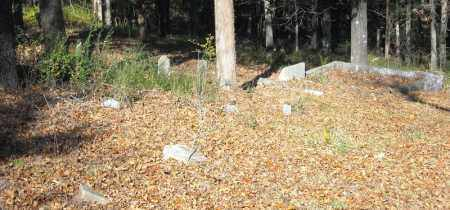 *OVERVIEW AND INFORMATION,  - Faulkner County, Arkansas |  *OVERVIEW AND INFORMATION - Arkansas Gravestone Photos