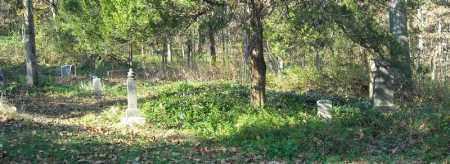 *OVERVIEW #4,  - Faulkner County, Arkansas    *OVERVIEW #4 - Arkansas Gravestone Photos