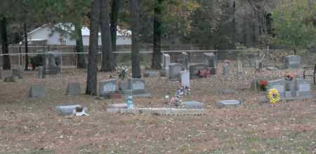 *CANEY OVERVIEW 1,  - Faulkner County, Arkansas |  *CANEY OVERVIEW 1 - Arkansas Gravestone Photos