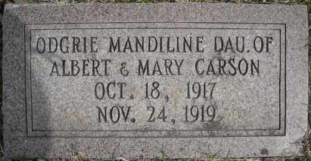 CARSON, ODGRIE MANDILINE - Faulkner County, Arkansas | ODGRIE MANDILINE CARSON - Arkansas Gravestone Photos