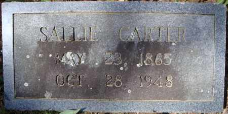 CARTER, SALLIE - Faulkner County, Arkansas | SALLIE CARTER - Arkansas Gravestone Photos