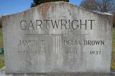 BROWN CARTWRIGHT, DELIA - Faulkner County, Arkansas | DELIA BROWN CARTWRIGHT - Arkansas Gravestone Photos