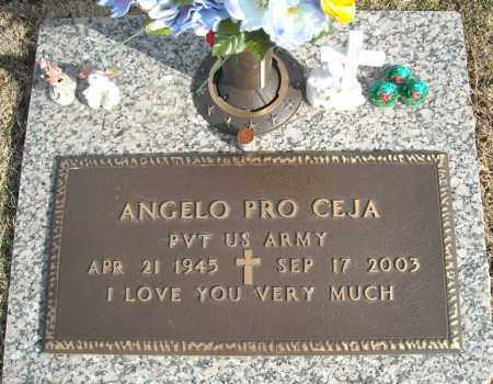 CEJA (VETERAN), ANGELO PRO - Faulkner County, Arkansas | ANGELO PRO CEJA (VETERAN) - Arkansas Gravestone Photos