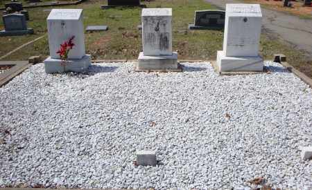 CLEMENTS FAMILY PLOT,  - Faulkner County, Arkansas |  CLEMENTS FAMILY PLOT - Arkansas Gravestone Photos