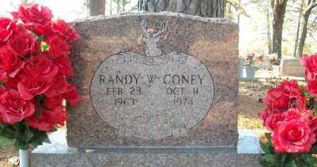 CONEY, RANDY W. - Faulkner County, Arkansas | RANDY W. CONEY - Arkansas Gravestone Photos