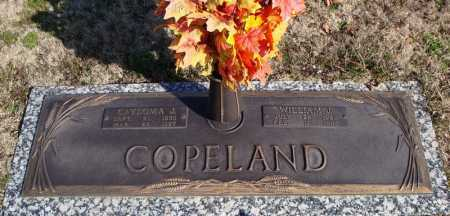 COPELAND, WILLIAM J. - Faulkner County, Arkansas | WILLIAM J. COPELAND - Arkansas Gravestone Photos
