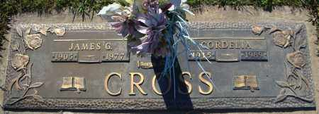 CROSS, JAMES G. - Faulkner County, Arkansas | JAMES G. CROSS - Arkansas Gravestone Photos