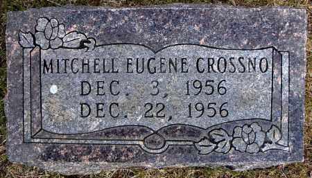 CROSSNO, MITCHELL EUGENE - Faulkner County, Arkansas | MITCHELL EUGENE CROSSNO - Arkansas Gravestone Photos