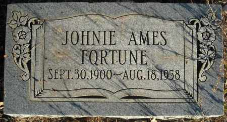 FORTUNE, JOHNIE AMES - Faulkner County, Arkansas | JOHNIE AMES FORTUNE - Arkansas Gravestone Photos