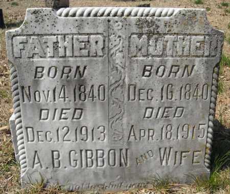 GIBBON, A.B. - Faulkner County, Arkansas | A.B. GIBBON - Arkansas Gravestone Photos