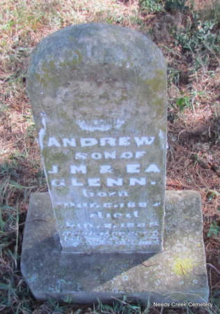 GLENN, ANDREW - Faulkner County, Arkansas | ANDREW GLENN - Arkansas Gravestone Photos