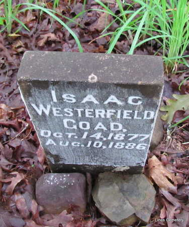 GOAD, ISAAC WESTERFIELD - Faulkner County, Arkansas | ISAAC WESTERFIELD GOAD - Arkansas Gravestone Photos