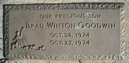 GOODWIN, BRAD WINTON - Faulkner County, Arkansas | BRAD WINTON GOODWIN - Arkansas Gravestone Photos
