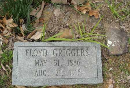 GRIGGERS, FLOYD LAFAYETTE - Faulkner County, Arkansas | FLOYD LAFAYETTE GRIGGERS - Arkansas Gravestone Photos