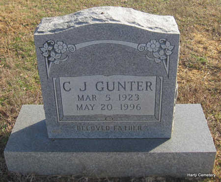 GUNTER, C.J. - Faulkner County, Arkansas | C.J. GUNTER - Arkansas Gravestone Photos