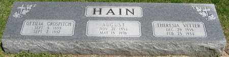 HAIN, THERESIA - Faulkner County, Arkansas | THERESIA HAIN - Arkansas Gravestone Photos