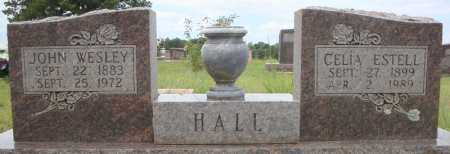 HALL, JOHN WESLEY - Faulkner County, Arkansas | JOHN WESLEY HALL - Arkansas Gravestone Photos