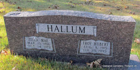HALLUM, TROY HUBERT - Faulkner County, Arkansas | TROY HUBERT HALLUM - Arkansas Gravestone Photos