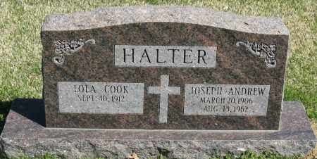 COOK HALTER, LOLA - Faulkner County, Arkansas | LOLA COOK HALTER - Arkansas Gravestone Photos