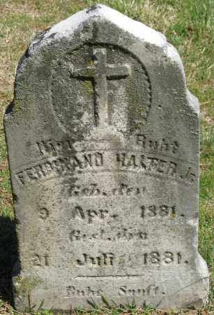 HALTER, JR., FERDINAND - Faulkner County, Arkansas | FERDINAND HALTER, JR. - Arkansas Gravestone Photos