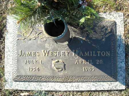HAMILTON, JAMES WESLEY - Faulkner County, Arkansas | JAMES WESLEY HAMILTON - Arkansas Gravestone Photos