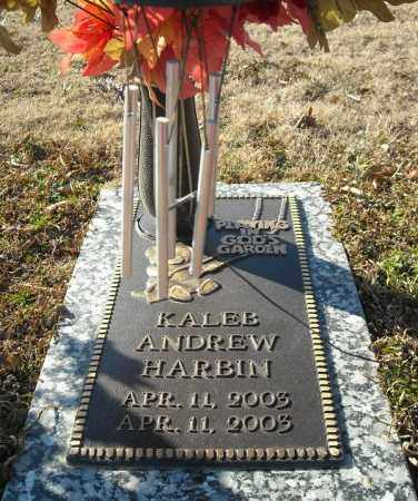 HARBIN, KALEB ANDREW - Faulkner County, Arkansas | KALEB ANDREW HARBIN - Arkansas Gravestone Photos