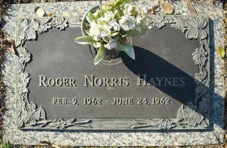HAYNES, ROGER NORRIS - Faulkner County, Arkansas | ROGER NORRIS HAYNES - Arkansas Gravestone Photos