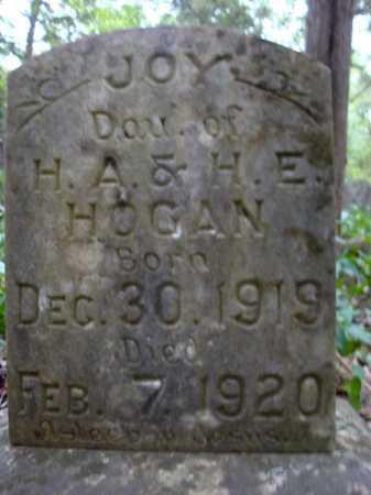 HOGAN, JOY - Faulkner County, Arkansas | JOY HOGAN - Arkansas Gravestone Photos