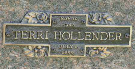HOLLENDER, TERRI - Faulkner County, Arkansas | TERRI HOLLENDER - Arkansas Gravestone Photos