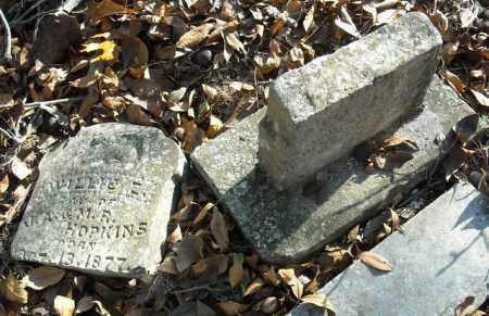 HOPKINS, WILLIE E. - Faulkner County, Arkansas | WILLIE E. HOPKINS - Arkansas Gravestone Photos